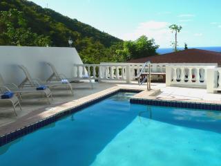 Serendipity House, Pool, sleeps 1-10 - Tortola vacation rentals