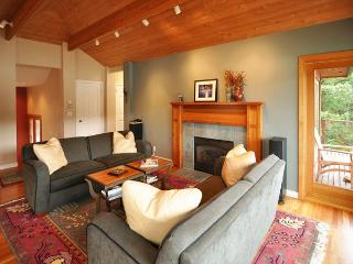 Seaside on Orcas, Private, Gorgeous Waterfront & Hot Tub! - Lummi Island vacation rentals