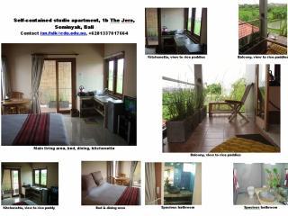 JERO 1b: S/C apartments Seminyak Bali 10 min beach - Seminyak vacation rentals