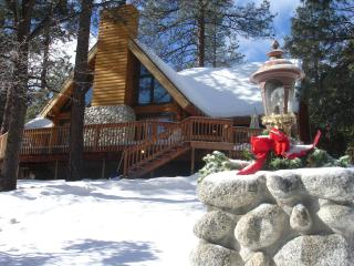 Luxury Mountain Log Home - in most desirable area - Idyllwild vacation rentals