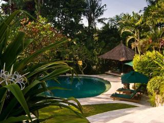 Canggu Riverside Villa Bougainvillea 3-bdrm Bali - Umalas vacation rentals