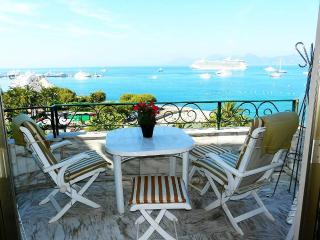 Cannes Croisette seaview 1bedroom flat garage wifi - Vallauris vacation rentals