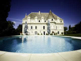 Luxury Chateau: 8 bedrooms, private pool & tennis - Touffailles vacation rentals