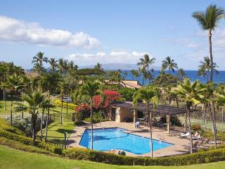 WOW !  WHAT A GREAT VIEW ! ---Great Reviews ! - Wailea vacation rentals
