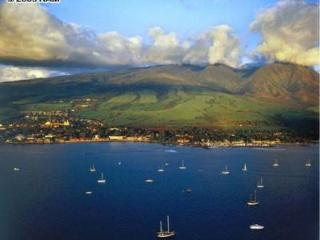 Maui Vacation Villa, Ocean Views, Pool  Waterfalls - Lahaina vacation rentals