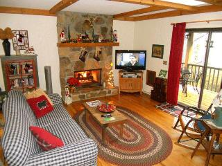 Lakeview Cottage - Great View of Lake Sequoyah - Highlands vacation rentals