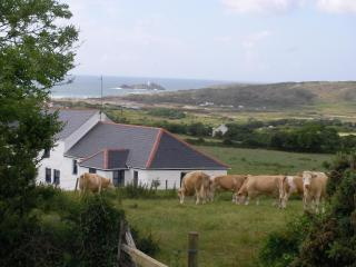 Pennance Vean Farm luxury seaview barn Gwithian - Penzance vacation rentals