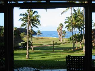 Incredible whitewater 1BR ocean view condo - Maunaloa vacation rentals