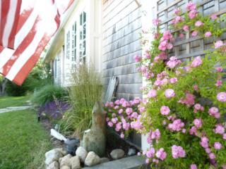 The Cottage at Arrowhead, near Bay & Ocean beaches - Truro vacation rentals