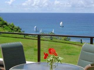 Princevile's Puu Poa Paradise - Princeville vacation rentals