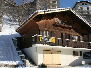 Chalet Serac - a smart 5-bedroomed ski chalet - Rhone-Alpes vacation rentals