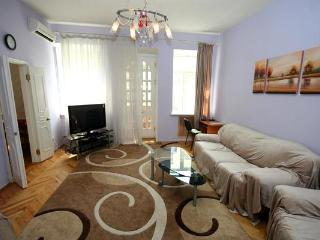 216, 20 Mala Zhitomirska, 2-bedr close to Maydan - Mriya vacation rentals