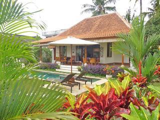 Villa Damai - Private open living villa w/ pool - Ubud vacation rentals
