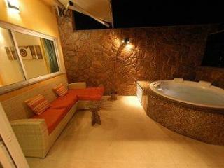 Penthouse Rio de Janeiro with private pool! - Rio de Janeiro vacation rentals