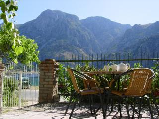 Mimosa Montenegro - Kotor Bay - Nature's Valley vacation rentals