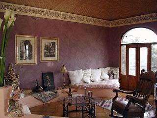 Casa Caracol - San Miguel de Allende vacation rentals