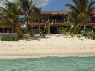 Beautiful beachfront Condo. Best rates in area! - Akumal vacation rentals