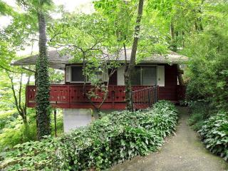 Pet-Friendly cabin 3 min. to downtown Asheville - Asheville vacation rentals
