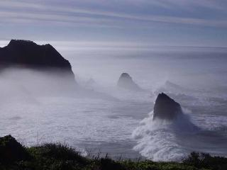 Spectacular Ocean Front Rental on Mendocino Coast - North Coast vacation rentals