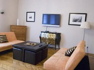 Danube View, Downtown, great prices, WIFI - Hungary vacation rentals