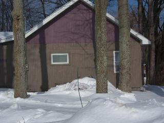 Northern Michigan 4 Bedroom Home Platte River - Lake Ann vacation rentals