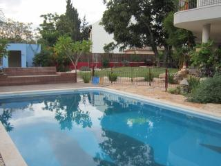 Eco Garden Apartment with Private Pool - Tel Aviv District vacation rentals