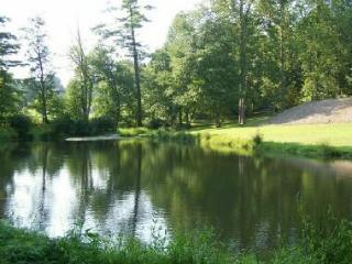 6BR/4BA/4000SF/Pond/HotTub/Kings/Massage Chr - Asheville vacation rentals