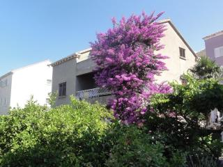 Apartment  bungevilia in center  of Dubrovnik - Dubrovnik vacation rentals