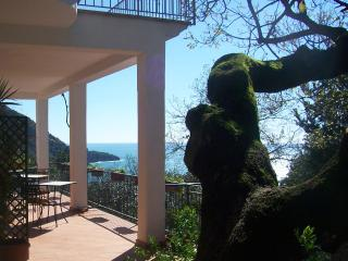 B&B La casa del gelso in Maratea (Basilicata) - Sanza vacation rentals