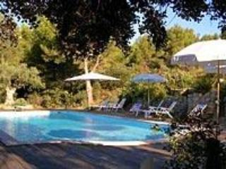 Mas la Monaque, Provence, Superb 5 Bedroom Villa with Grill and Fireplace - Fontvieille vacation rentals