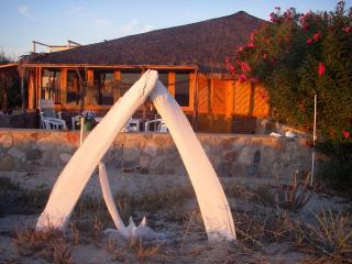 Cabo Pulmo Eco Palapa - Baja California vacation rentals