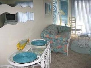 41st Ocean City Condo - Great Ocean View - Ocean City vacation rentals