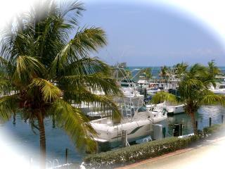 Oceanfront villa in Key Largo - Key Largo vacation rentals