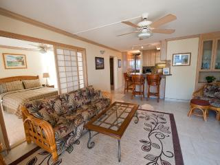 Spectacular Maalaea Bay Upscale Rental - 2 Bedroom - Maalaea vacation rentals