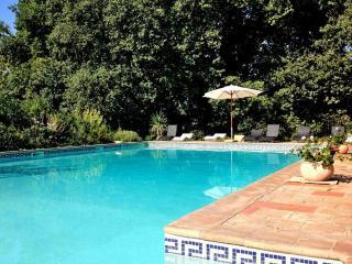Charming terraced Apt in Hermitage Wine Castle - Puisserguier vacation rentals
