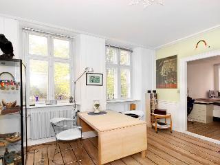 Centrally located Copenhagen apartment - Copenhagen vacation rentals