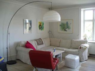 Large Copenhagen apartment close to Botanical Garden - Copenhagen Region vacation rentals