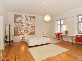 Lovely artist apartment in Copenhagen - Copenhagen vacation rentals