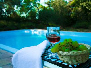 Detached house with private pool in Wine Castle - Montpeyroux vacation rentals