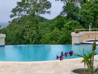 Great River House - Montego Bay vacation rentals