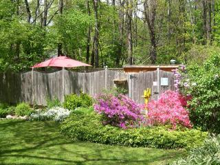 Sherwood Forest B & B Cottage - Douglas vacation rentals
