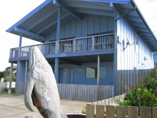 Pet-friendly 2 bedrm 1 bath Beach Retreat - Lower - Newport vacation rentals