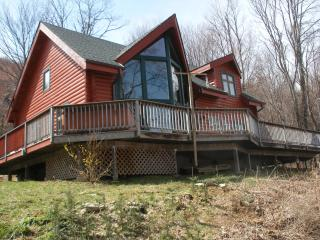 Secluded Log Cabin, Gorgeous views, Hot tub! - Valle Crucis vacation rentals