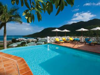 CASA BRANCA... a gorgeous tropical hideaway! Very private and quiet with lush gardens - Anse Marcel vacation rentals