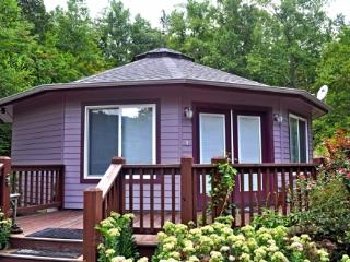 Amethyst Creek Cottage-Eco-Friendly Deltec & Writer's Paradise - Chimney Rock vacation rentals