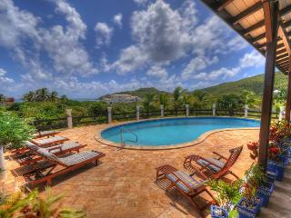 MAHOGANY... a great family villa in a quiet location with only 222 easy steps to a wonderful beach! - Guana Bay vacation rentals
