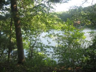 Private Lakefront home in Woods, Belchertown, MA - Belchertown vacation rentals
