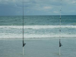 Our condo in New Smyrna Beach Florida - New Smyrna Beach vacation rentals