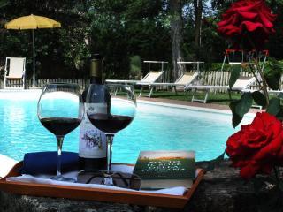 Siena San Fabiano  climatized villa with pool - Siena vacation rentals