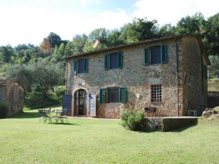 Farmhouse near Village on Wine Estate - Casa Gennaro - Vorno vacation rentals